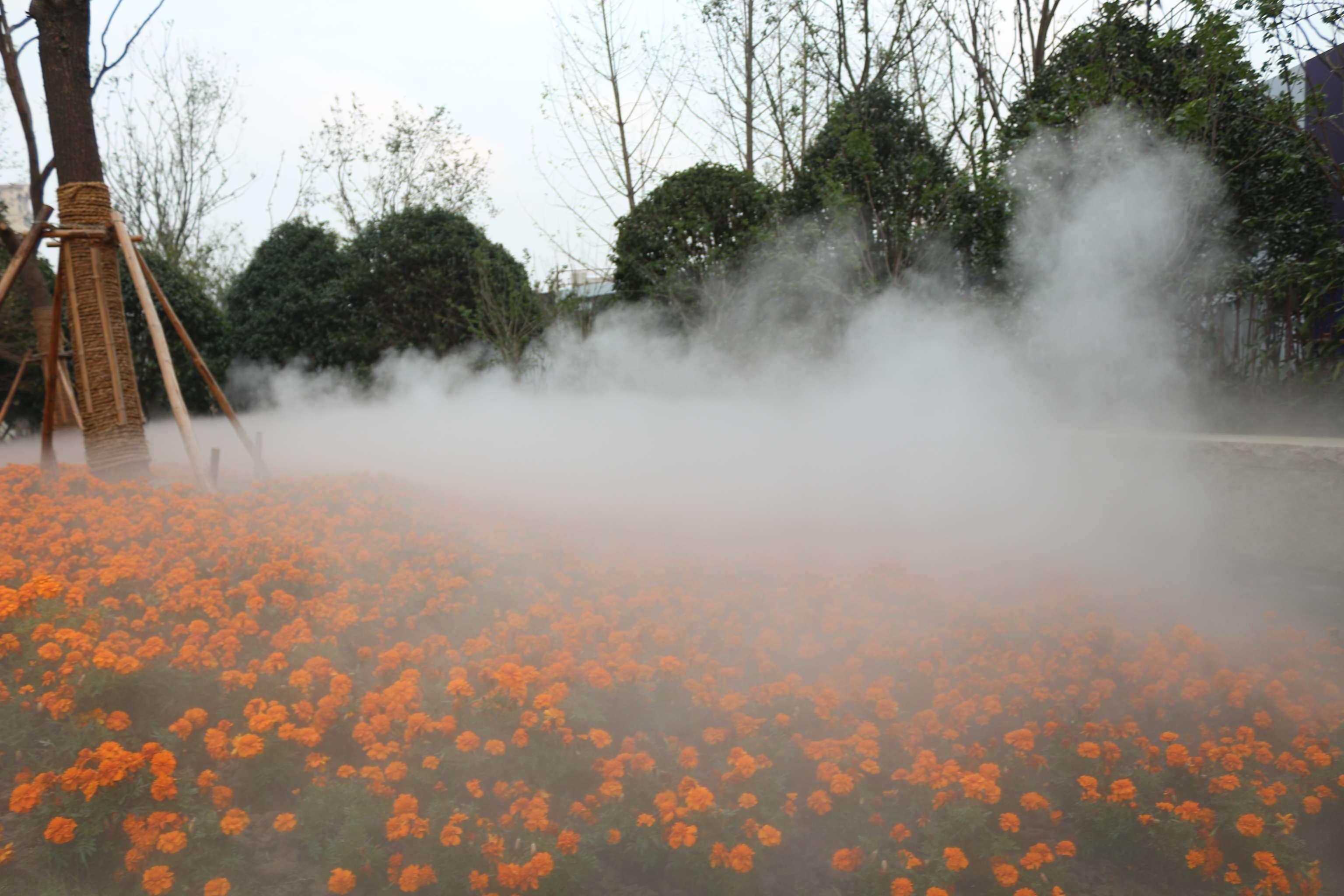 喷雾造景,雾森设备,人造雾